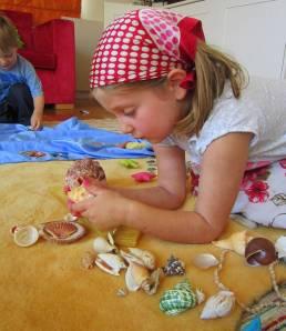 shells look