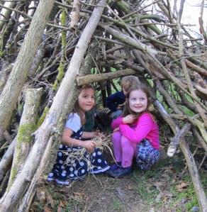 nature treehouse